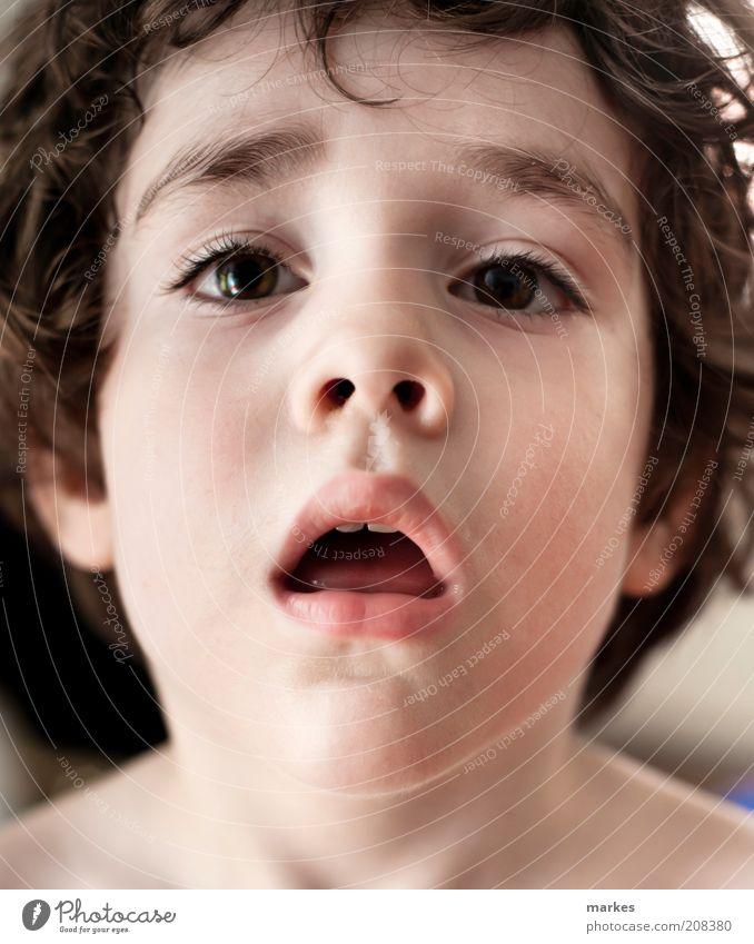 Mensch Kind Gesicht Junge hoch Kindheit verschwenden 3-8 Jahre
