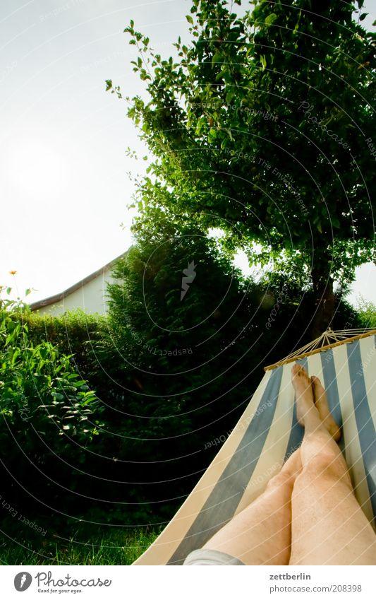 Hängematte Mensch Mann Baum Ferien & Urlaub & Reisen ruhig Erholung Garten Fuß Beine Erwachsene schlafen liegen Baumstamm Hecke Apfelbaum Hängematte