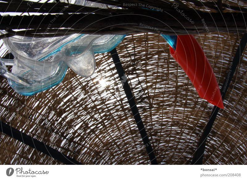 froschperspektive Meer blau Ferien & Urlaub & Reisen Erholung oben Zufriedenheit braun Sicherheit Abenteuer liegen Freizeit & Hobby Maske tauchen Neugier