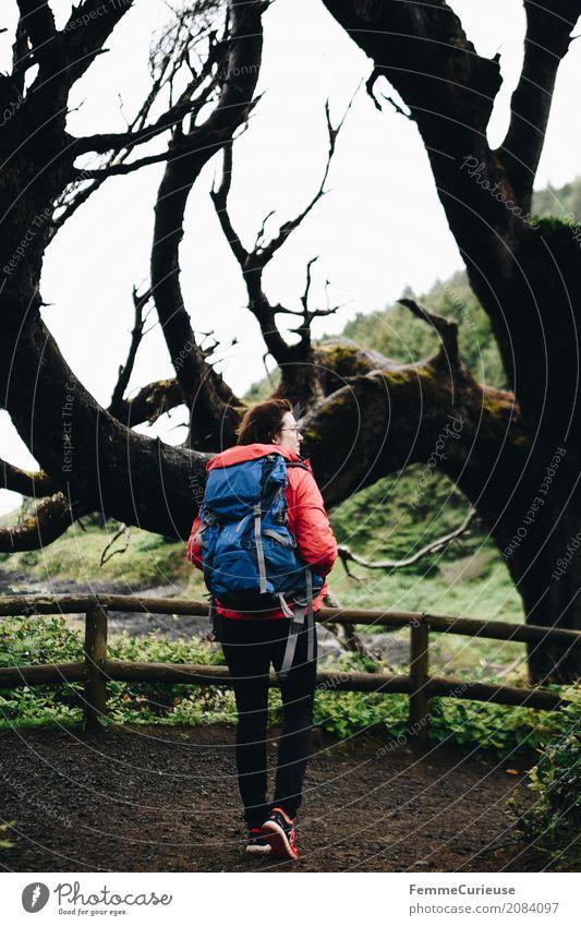 Roadtrip West Coast USA (318) Mensch Frau Natur Jugendliche Junge Frau Baum rot 18-30 Jahre Erwachsene Küste feminin Freiheit Ausflug wandern Luft Abenteuer