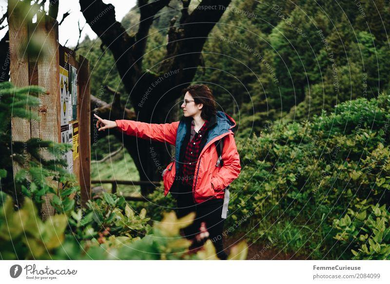 Roadtrip West Coast USA (82) Mensch Frau Natur Jugendliche Junge Frau Baum rot Wald 18-30 Jahre Erwachsene feminin Ausflug wandern Luft Schilder & Markierungen
