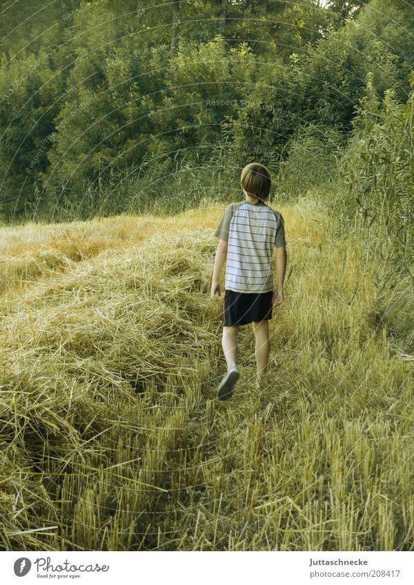 Auf dem Weg zum Baumhaus Mensch Kind Natur Sommer Einsamkeit Erholung Umwelt Junge gehen Zufriedenheit Kindheit Feld maskulin frei Abenteuer T-Shirt