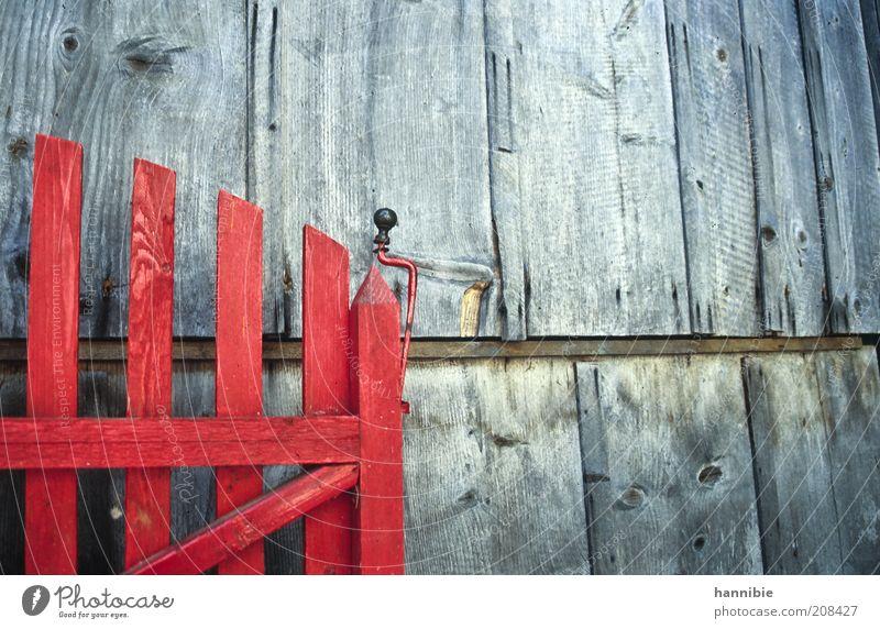 es ist offen! rot Wand Holz grau Mauer Tür analog Perspektive Dia ländlich Pferch verwittert Stall Haus gestrichen