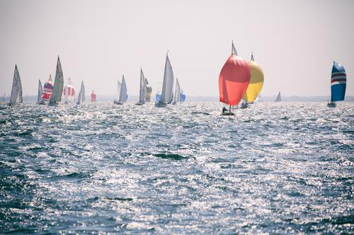 Kieler Woche Sport Wassersport Segeln Bootsfahrt Jacht Segelboot Wasserfahrzeug fahren Ferne frei frisch Unendlichkeit maritim sportlich blau Fernweh Laboe