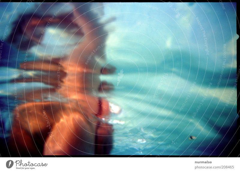 irgendwie unter Wasser Natur blau Ferien & Urlaub & Reisen Sommer Umwelt Bewegung braun Wellen Freizeit & Hobby glänzend Haut nass Schwimmen & Baden ästhetisch