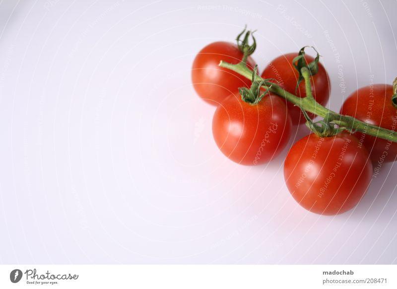 Wasserbomben Natur rot Pflanze Leben Gesundheit Lebensmittel Ernährung rund Gemüse Stengel lecker Zweig reif Bioprodukte Diät Tomate