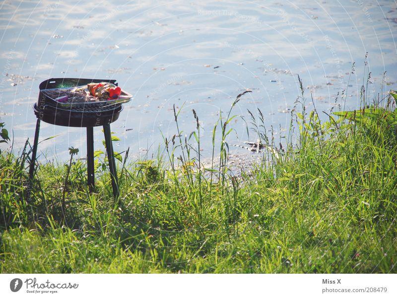 Grillen am See Lebensmittel Fleisch Wurstwaren Ernährung Ferien & Urlaub & Reisen Ausflug Sommerurlaub Teich lecker Grillplatz Farbfoto Außenaufnahme