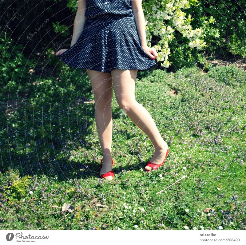 rock on feminin Junge Frau Jugendliche Beine 1 Mensch 18-30 Jahre Erwachsene Rockabilly retro Natur Pflanze Frühling Schönes Wetter Blume Gras Sträucher Mode