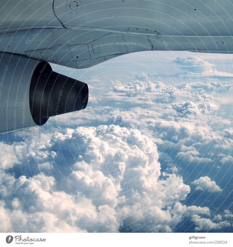 tomatensaft bitte! Ferien & Urlaub & Reisen Wolken oben Erde Flugzeug fliegen hoch Luftverkehr Technik & Technologie Tragfläche Flughafen Mobilität