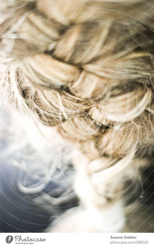 Flechtwerk Haare & Frisuren blond Zopf Behaarung natürlich niedlich schön geflochten Franzosenzopf Netzwerk Zusammenhalt Haarsträhne Haargummi binden