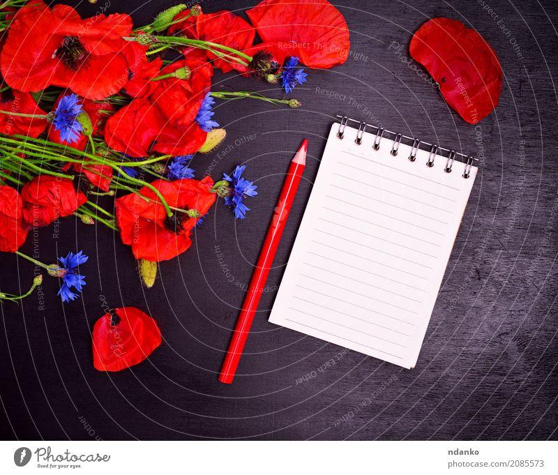 Leeres Papiernotizbuch mit einem roten Bleistift Feste & Feiern Valentinstag Muttertag Pflanze Blatt Blüte Blumenstrauß Blühend natürlich blau grün schwarz