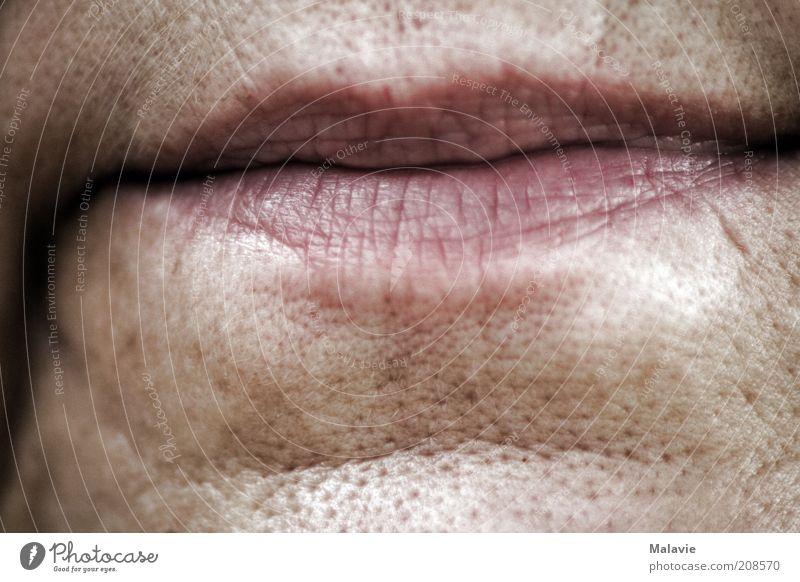 Lippenbekenntnis Mensch Frau alt Erwachsene Senior Haut natürlich Vergänglichkeit Lippen Hautfalten 45-60 Jahre Weiblicher Senior Gesicht Pore Gesichtsausschnitt Frauenmund