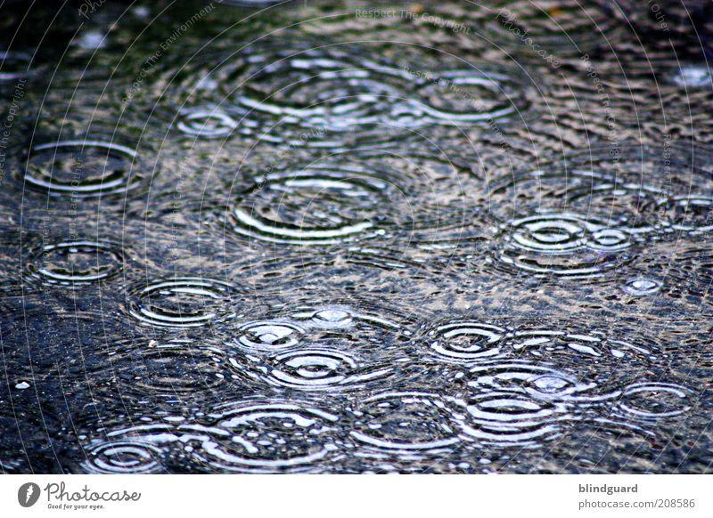 Summer Rain Wasser weiß grün blau schwarz Regen Angst Wetter Wassertropfen nass Kreis Gewitter Unwetter Klimawandel schlechtes Wetter Reflexion & Spiegelung