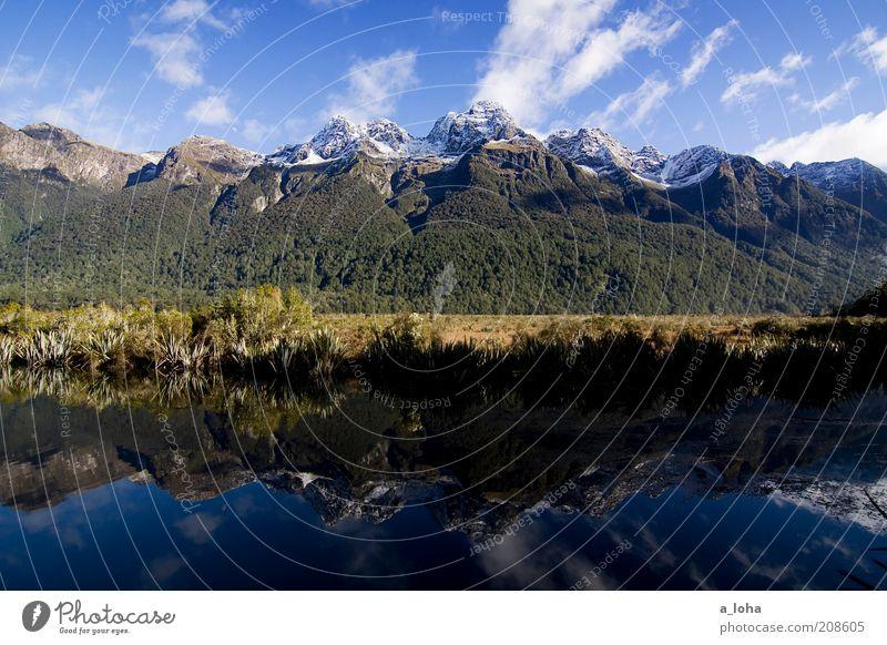mirror lakes Natur Landschaft Urelemente Wasser Himmel Wolken Sonnenlicht Herbst Schönes Wetter Wald Felsen Berge u. Gebirge Schneebedeckte Gipfel Seeufer