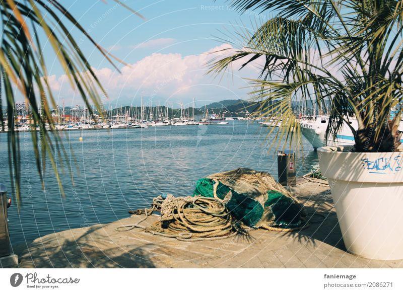 Cinque Terre XIV - La Spezia Stadt Hafenstadt heiß la spezia Ligurien Italien Palme Mittelmeer Wasserfahrzeug Leinen Seil Fischereiwirtschaft Angeln Sommer