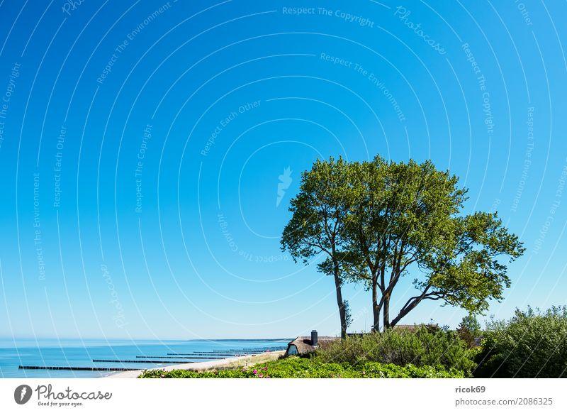 Strand an der Ostsee bei Ahrenshoop Natur Ferien & Urlaub & Reisen blau Baum Landschaft Meer Erholung Haus Wolken Küste Gebäude Tourismus Wetter Wellen Idylle