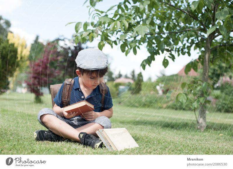 welches nehme ich maskulin Kind Junge Kindheit Leben 1 Mensch 3-8 Jahre Natur Sommer Schönes Wetter Baum Garten Wiese Lächeln lernen lesen sitzen träumen frei