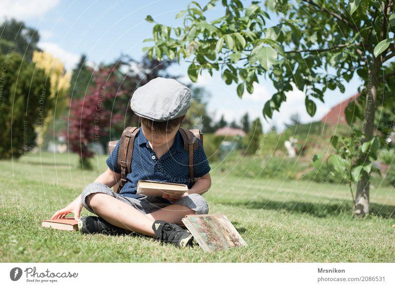 Leser lesen Abenteuer Freiheit Sommer maskulin Kind Kleinkind Junge Familie & Verwandtschaft Kindheit 1 Mensch 3-8 Jahre Garten Park beobachten lernen Blick