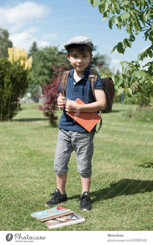Schulstart Mensch maskulin Kind Kleinkind Junge Kindheit Leben 1 1-3 Jahre Himmel Sommer Schönes Wetter Garten Park Wiese Hut Mütze Baskenmütze beobachten