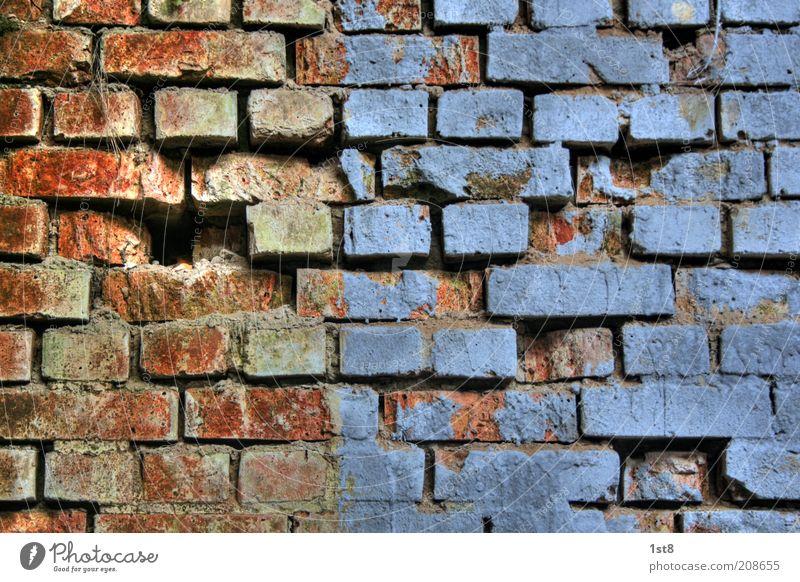 blue bricks Haus Architektur Mauer Wand alt blau rot Vergänglichkeit Backstein Loch Fuge Putz gebrochen Farbstoff Anstrich Vernetzung Farbfoto Innenaufnahme