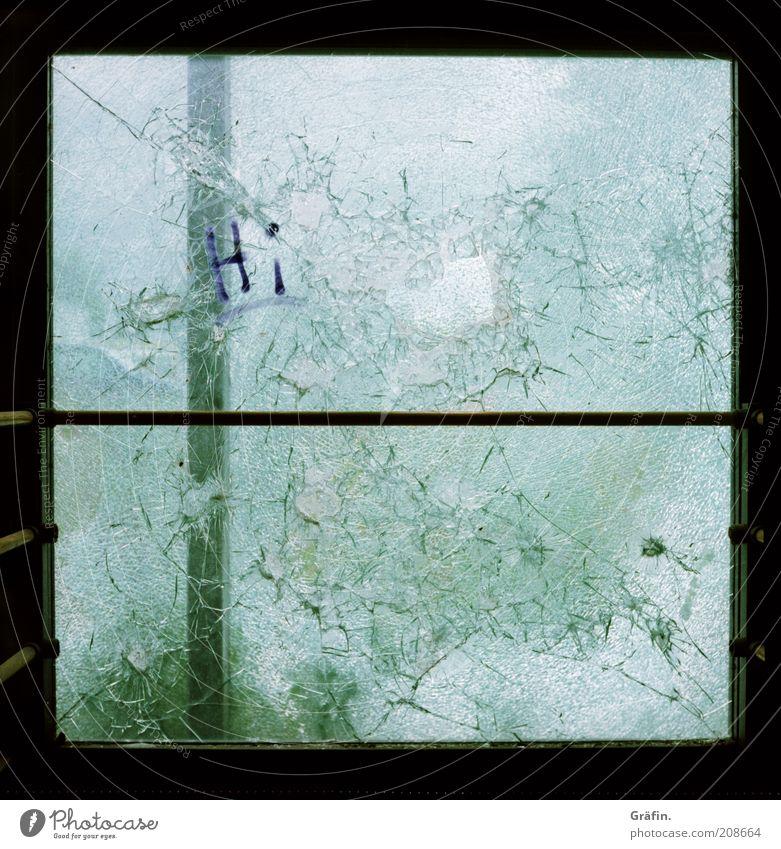 [H 10.1] Hingeschmettert grün dunkel Fenster Metall Glas dreckig kaputt trashig Riss Fensterscheibe Zerstörung zerbrechlich Glasscheibe Vandalismus Schmiererei