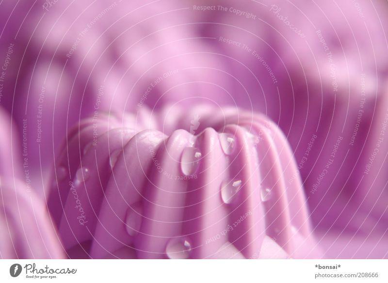 google hupf Linie Design Wassertropfen nass Kochen & Garen & Backen Küche Kuchen rund nah Tropfen violett Sauberkeit Reinigen lecker Appetit & Hunger genießen