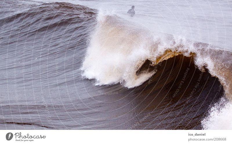 die perfekte Welle Mensch Natur Wasser Sommer Ferien & Urlaub & Reisen Meer kalt Sport Freiheit braun Wellen Wind Freizeit & Hobby groß frei Urelemente