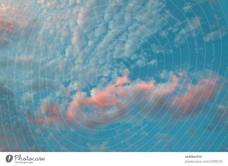 Rosarot und himmelblau Himmel Sommer Wolken Luft Wetter Umwelt Fröhlichkeit Romantik Klima Weltall Freundlichkeit Schönes Wetter positiv Abenddämmerung Klimawandel Himmelskörper & Weltall