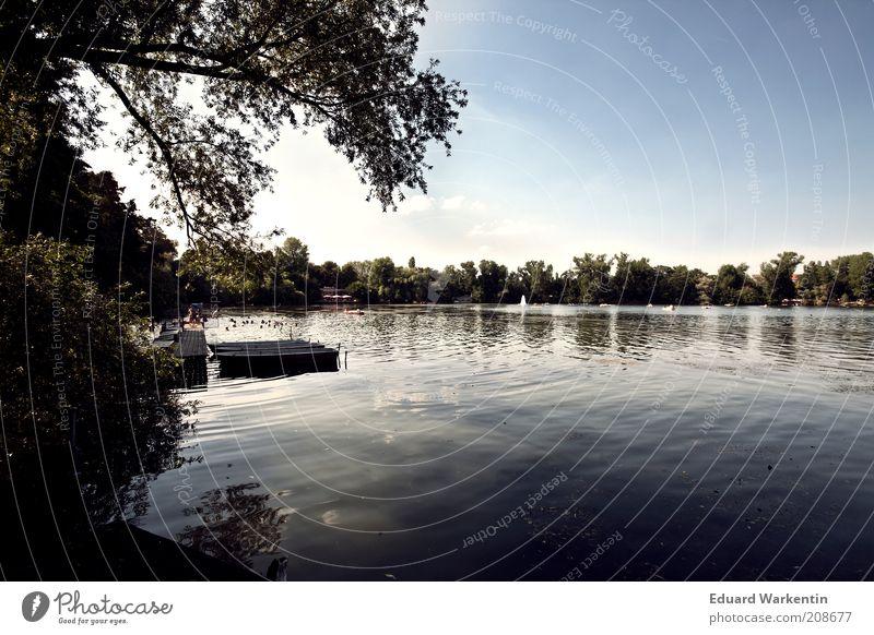 Weißensee Himmel Natur Wasser Pflanze Ferien & Urlaub & Reisen Sommer ruhig Erholung Umwelt Landschaft Freiheit Luft Stimmung See Wetter Freizeit & Hobby