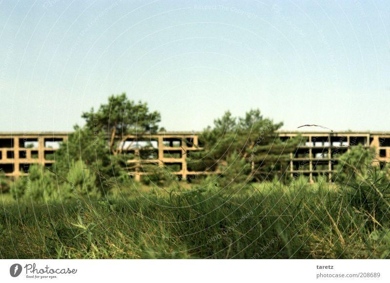 Backstein Prora Häuserzeile Plattenbau Ruine Bauruine KdF-Anlage Farbfoto Außenaufnahme Menschenleer Tag Unschärfe Schwache Tiefenschärfe abrissreif