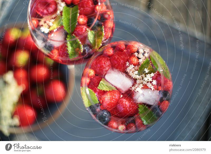 so schmeckt der Sommer ii Getränk Erfrischungsgetränk Alkohol Sekt Prosecco Glas kalt lecker saftig rot Lebensfreude Frühlingsgefühle Beeren Minze Holunderblüte