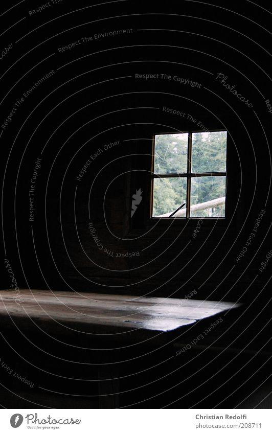 Das Fenster Häusliches Leben Wohnung Haus Innenarchitektur Möbel Raum Einfamilienhaus Hütte ruhig Farbfoto Innenaufnahme Menschenleer Textfreiraum links Tag