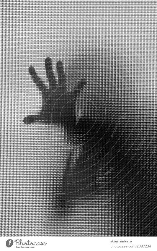 Menschliche Silhouette hinter einer Glasscheibe, die Hände berühren die Scheibe Frau Erwachsene Mann Hand 1 kämpfen Konflikt & Streit Aggression ästhetisch