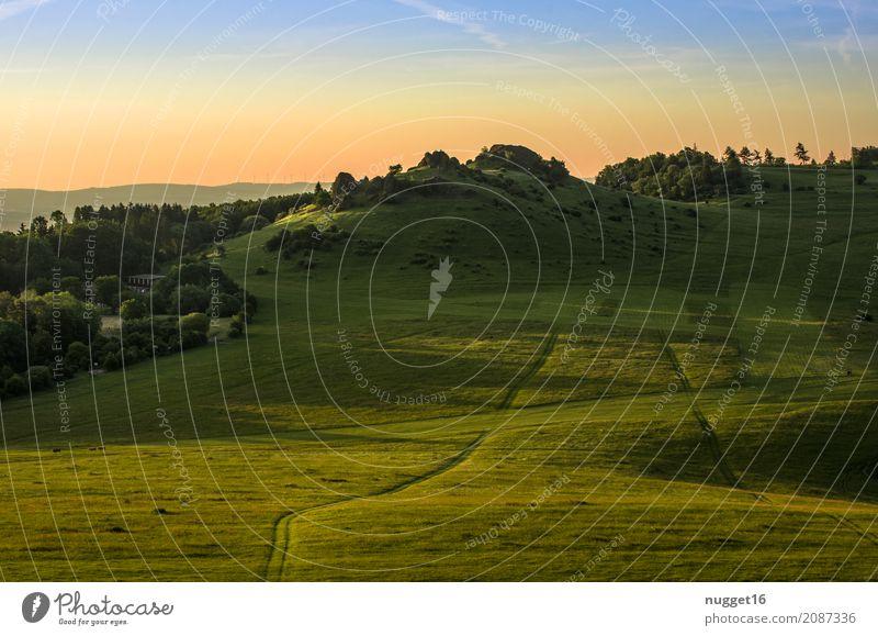 auf dem Dörnberg in Nordhessen 9 Himmel Natur Ferien & Urlaub & Reisen Pflanze blau Sommer grün Sonne Landschaft Ferne Wald Berge u. Gebirge Umwelt gelb