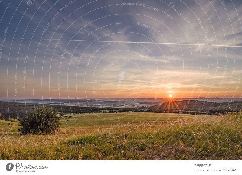 auf dem Dörnberg in Nordhessen 6 Himmel Natur Ferien & Urlaub & Reisen Pflanze blau Sommer grün Sonne Landschaft Ferne Wald Berge u. Gebirge Umwelt gelb