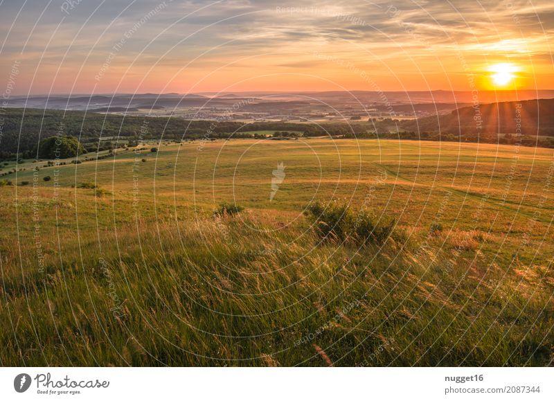 Sonnenaufgang auf dem Dörnberg in Nordhessen 5 Himmel Natur Ferien & Urlaub & Reisen Pflanze blau Sommer grün Landschaft Ferne Wald Berge u. Gebirge Umwelt gelb