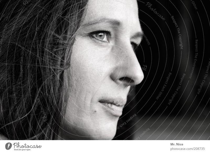 augen blick Frau schön ruhig Gesicht Erwachsene Auge feminin Kopf Haare & Frisuren Stimmung Kraft Haut Mund natürlich Nase Hoffnung
