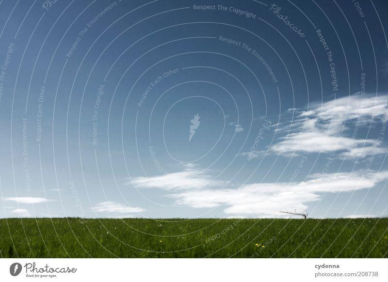 Existenzen Natur Himmel Sommer ruhig Wolken Einsamkeit Leben Wiese Gras Freiheit träumen Landschaft Zufriedenheit Gesundheit planen Umwelt