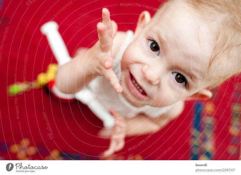 wAsn Spielen Kindererziehung Kleinkind Kindheit Kopf Gesicht Hand 1 Mensch 1-3 Jahre stehen frech lustig rebellisch unten rot Stimmung Coolness Neugier
