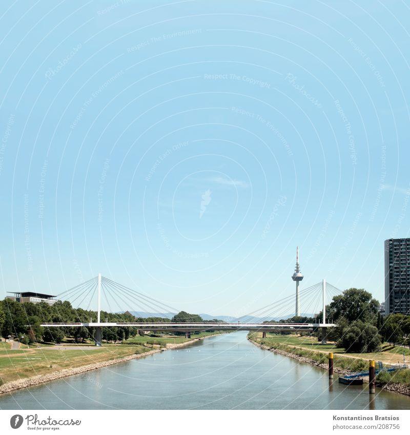 Entlang dem Neckar Himmel Sommer Schönes Wetter Baum Flussufer Mannheim Deutschland Europa Hochhaus Brücke Turm Gebäude Funkturm Stadt Wachstum Farbfoto