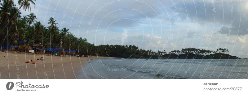 Wolken im Paradies (Panorama Indien) Palme Sommer Strand grün Physik Arabisches Meer Unendlichkeit Goa Bucht Sonne Urwald Wärme verstecken Paradise Beach