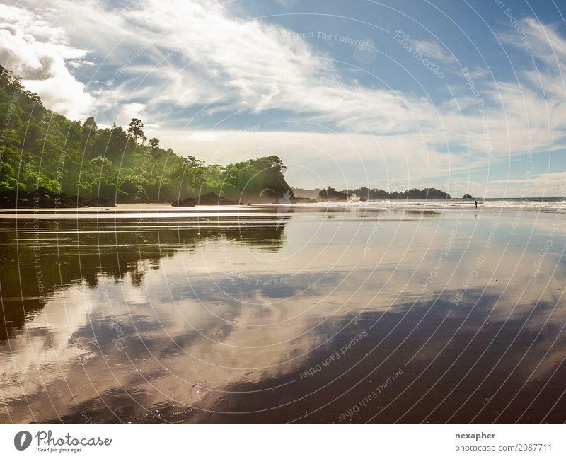 Reflected beach / Strandreflektion Natur Ferien & Urlaub & Reisen blau schön grün Baum Landschaft Erholung Wolken Freude Ferne Umwelt natürlich Küste Tourismus