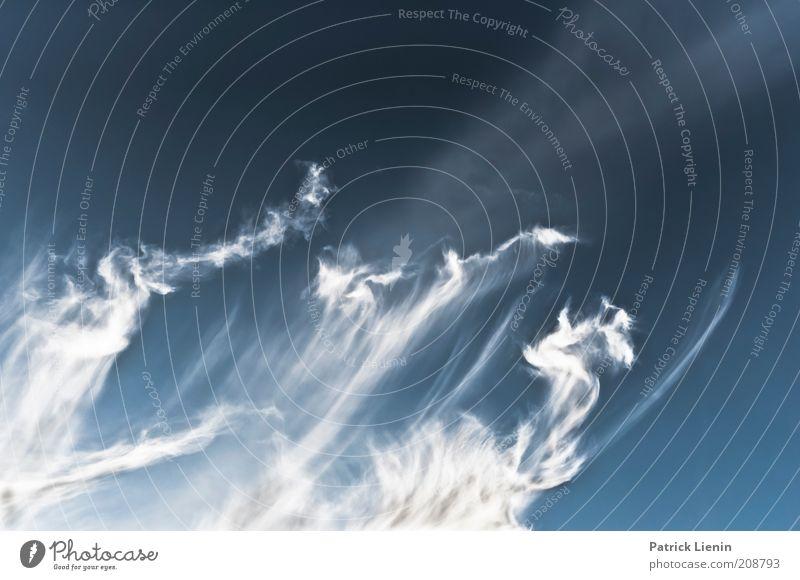 smoke in the sky Natur schön Himmel weiß blau Wolken Ferne Gefühle Landschaft Wind Wetter Umwelt fliegen hoch ästhetisch Klima