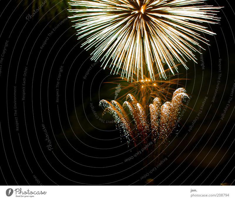 Feuerblume rot Freude schwarz gelb dunkel Gefühle Glück Stil Stimmung Kunst Feste & Feiern elegant gold Fröhlichkeit Show Silvester u. Neujahr