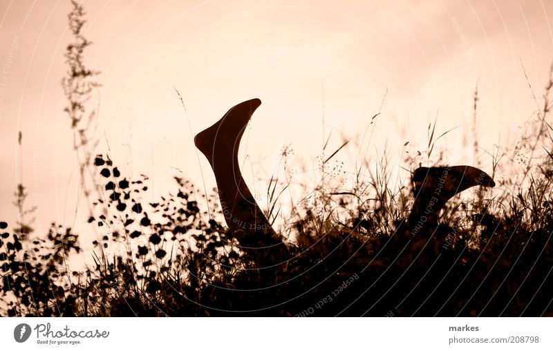 uups ?! Mensch Beine Fuß 1 genießen hängen liegen toben gelb gold Gefühle Freude Fröhlichkeit Euphorie Romantik Frieden Glück Gedeckte Farben Außenaufnahme