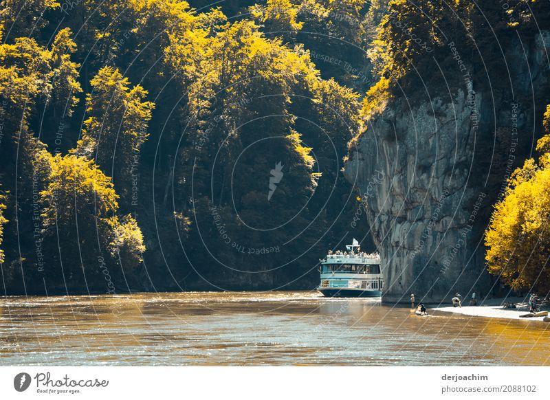 Ein Schiff kommt um die Donau Enge gefahren. Rechts große Felsen , links Felsen und von der Sonne angestrahlt kleine Bäume und Büsche. Auf dem Weg nach Kloster Weltenburg