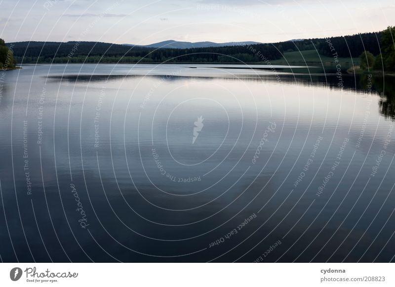 Still ruht der See Natur Wasser schön ruhig Einsamkeit Ferne Wald Leben Erholung Freiheit träumen Landschaft Gesundheit Umwelt Zeit