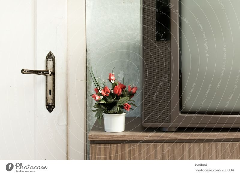 tv alt Tür Wohnung Häusliches Leben Dekoration & Verzierung retro Sauberkeit einfach Fernseher Kitsch Wohnzimmer trashig Bildausschnitt Siebziger Jahre