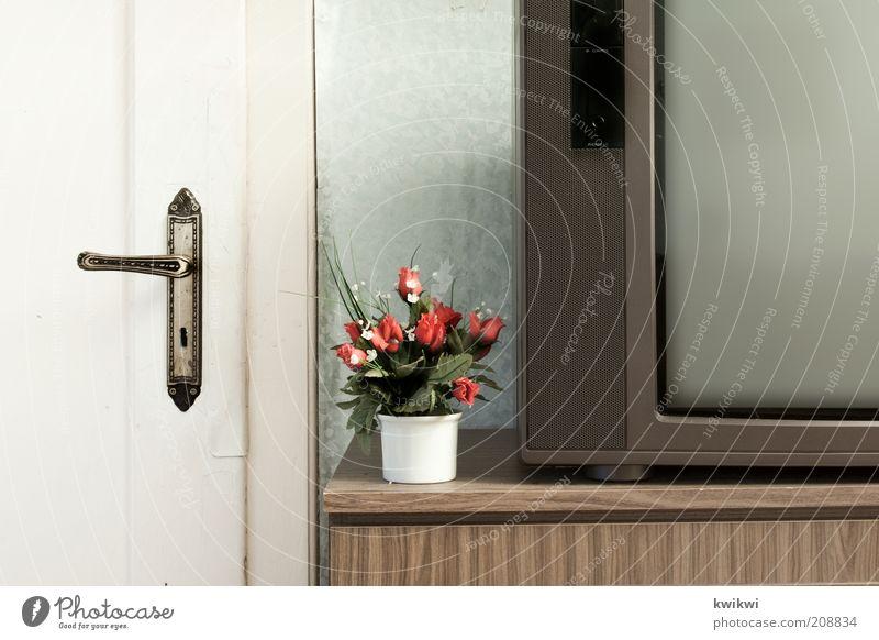 tv alt Tür Wohnung Häusliches Leben Dekoration & Verzierung retro Sauberkeit einfach Fernseher Kitsch Wohnzimmer trashig Bildausschnitt Siebziger Jahre Blumentopf Billig