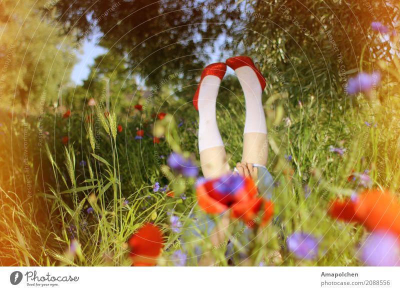 ::17-08:: Kind Frau Ferien & Urlaub & Reisen Jugendliche Junge Frau Sommer Blume rot Erholung Freude Mädchen Erwachsene Wiese feminin Glück Schule